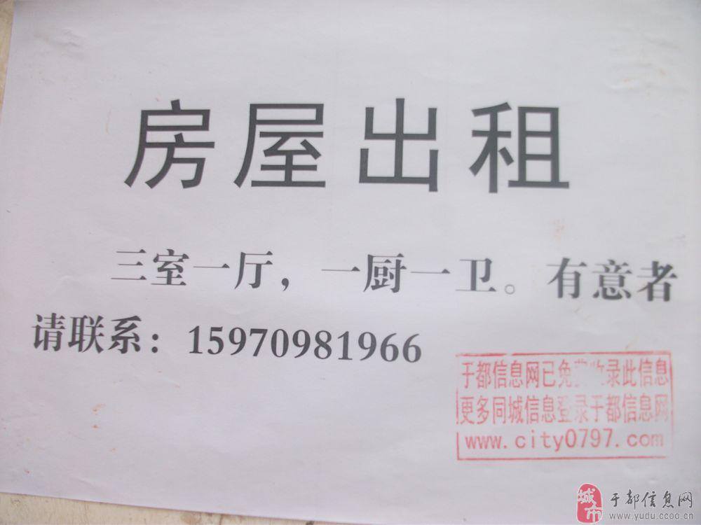 长征广场附近新房新装修出租 300 元/月   赞助商广告 既然路过图片
