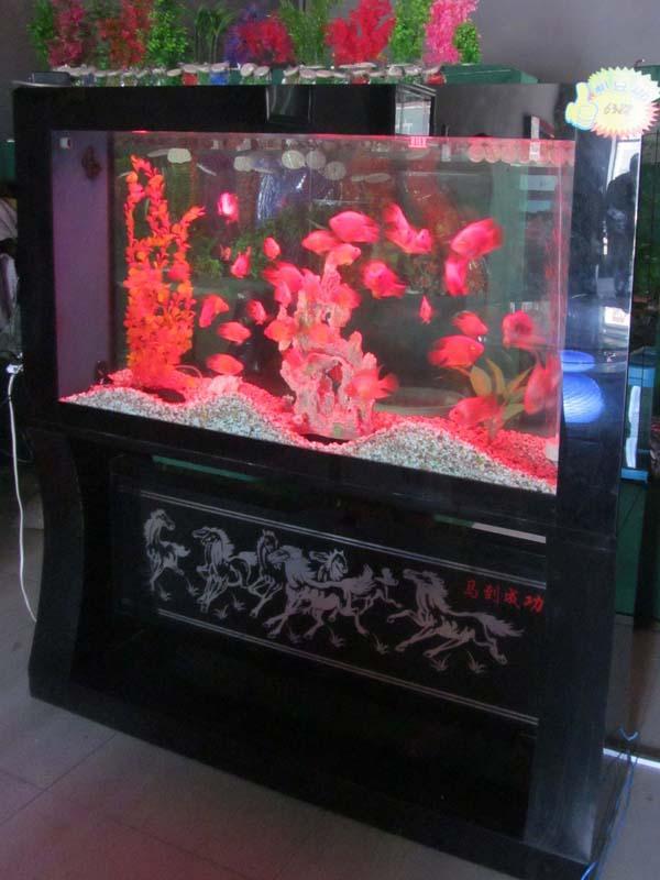 客厅鱼缸效果图 学会正确摆放鱼缸打造健康家居