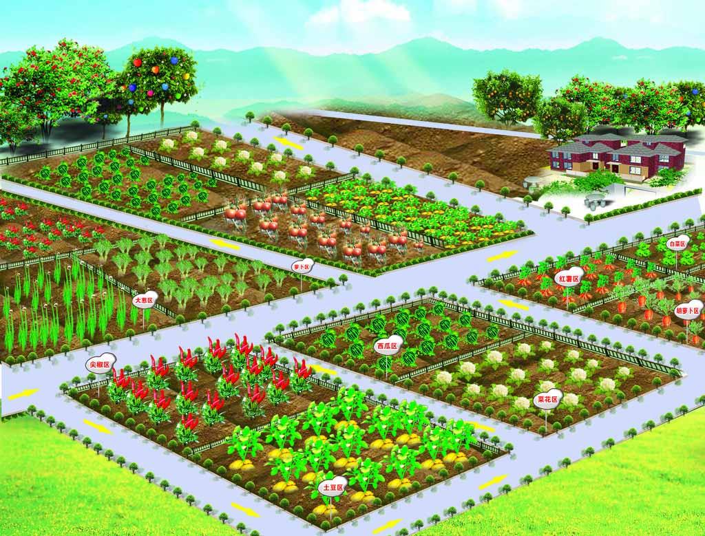 欢乐农场土地的简笔画