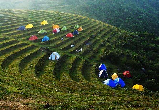 圣女岭-广西最古老茶树林