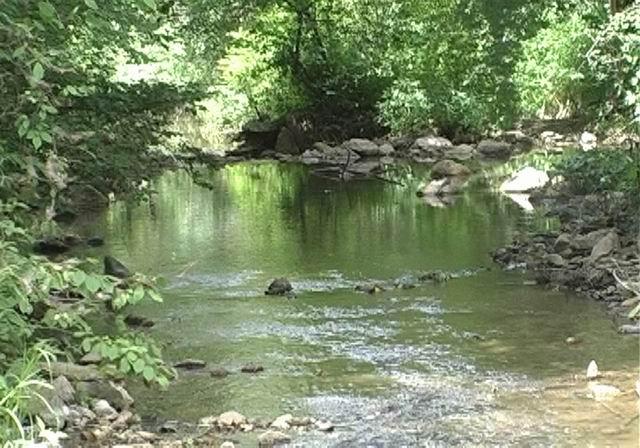 首页 森林评估 > 林蛙养殖评估; 宾县英杰风景区