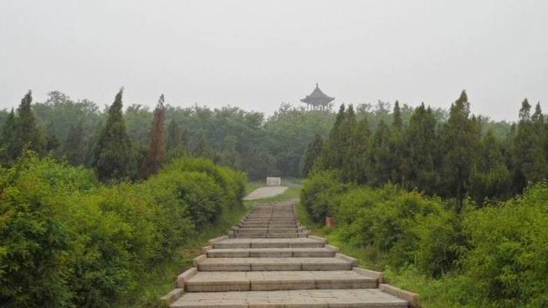 凌海市九华山森林公园