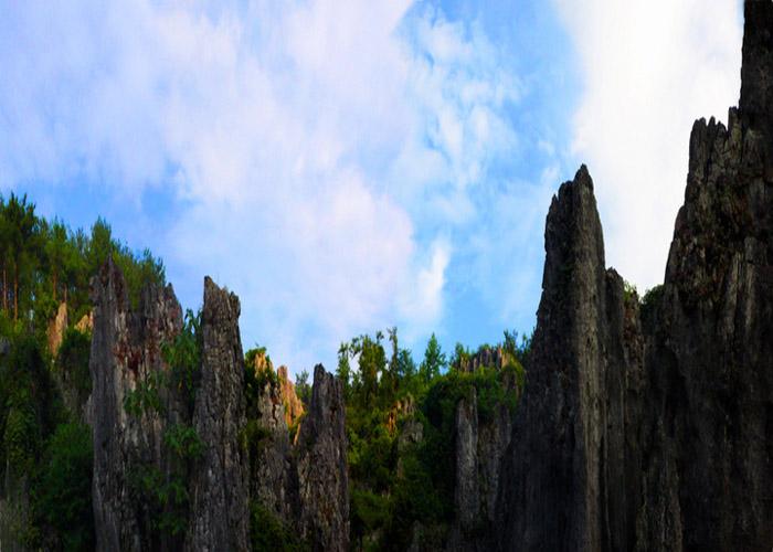 思南石林主要分布在贵州省思南县长坝景区和荆竹园景区,石林出露面积分别为4.9平方公里、2.3 平方公里。两片石林隔江相望,地表水沿可溶性碳酸盐岩的裂隙进行溶蚀和侵蚀,形成丛林状蚀余残留体,石林间有很深的石沟。  思南石林景点 景点分布 思南石林是地球上同纬度地区迄今发现的发育最好、生态保持最佳、保存最完整、出露面积最大的极具科普性和观赏性的连片喀斯特石林。空间上连片分布,类型众多,包含了石芽发育从幼年到青年到老年的各种形态,有针状石林、剑状石林、塔状石林、柱状石林、城堡状石林。林区形状多变,景色秀丽,能从