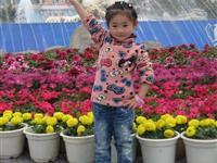 0044号胡希玥  3.2周岁
