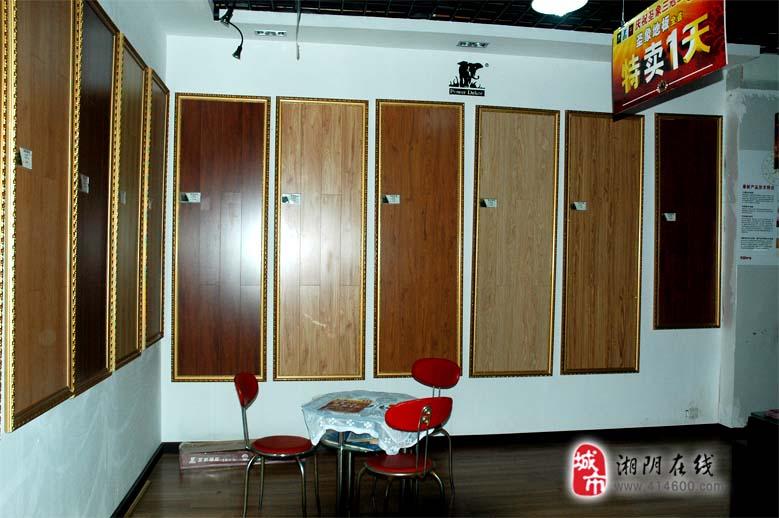 圣象地板    中国木地板第一品牌