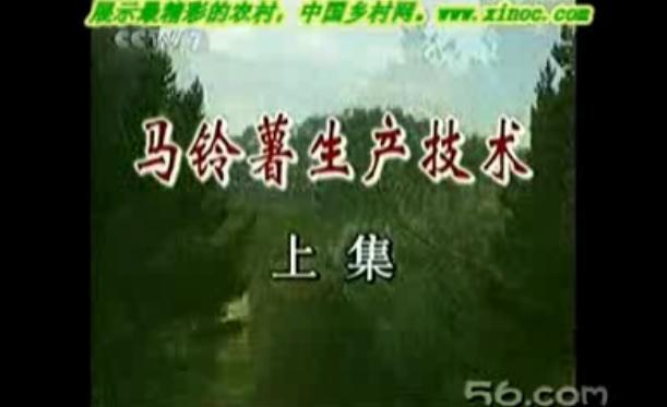 CCTV-7马铃薯生产技术(上)